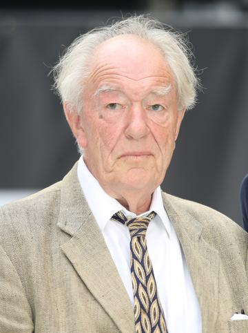 Michael Gambon took over the role as Hogwart's headmaster Albus Dumbledore after the death of Richard Harris. Gambon has worked extensively in film and theatre prior to taking on the role in 2004. He has since voiced Uncle Pastuzo in the Paddington film series as well as the role of Bernard Delfont in the award-winning 'Judy' (2019).  (Photo by Mike Marsland/Mike Marsland/WireImage)