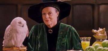 Established actress Maggie Smith took on the role as Professor McGonagall. After the filming of the films, she went on to star in the award winning Downton Abbey. She also gained great success on the West End stage, starring in A German Life (2019). Smith is currently working on the upcoming film 'A Boy Called Christmas', due for release in 2021.  Image credit: Warner Bros